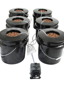 HTG Supply Bubble Brothers 6-Site Deep Water Culture Hydroponic System