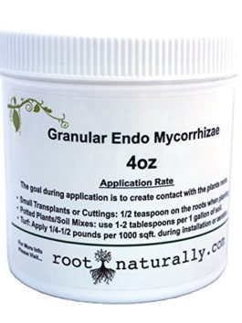 Root Naturally Endo Mycorrhizae – 4 Oz