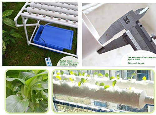 INTBUYING Hydroponic Site Grow Kit 72 Site Ebb and Flow Deep Water Culture Garden System with Nest Basket Water Pump and… Grow Tent Accessories