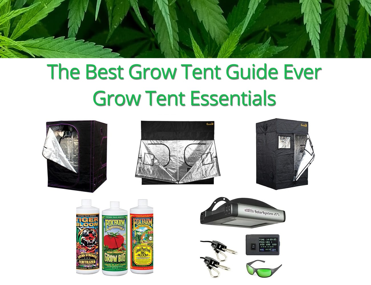 The Best Grow Tent Guide Ever – Grow Tent Essentials